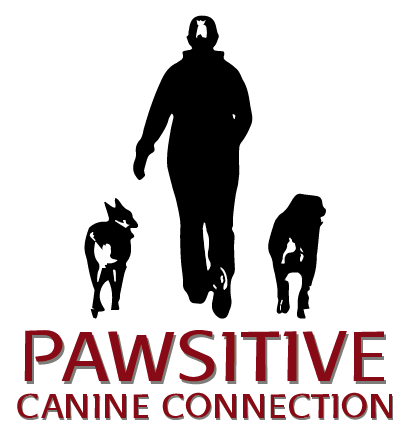 Pawsitive Canine Connection logo
