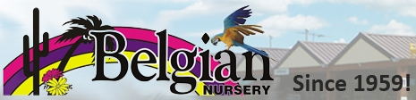 Belgian Nursery Ltd. logo